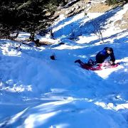 Kullu Manali Shimla Honeymoon Tour Packages from Damoh