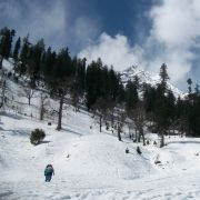 Kullu Manali Shimla Honeymoon Tour Packages from Deoli
