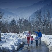 Kullu Manali Shimla Honeymoon Tour Packages from Pithampur